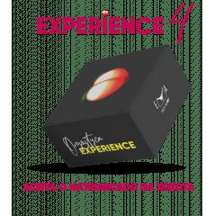 Orgásytca Experience
